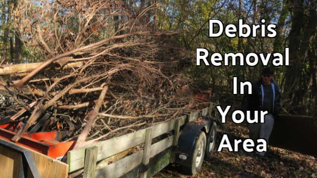 Limb Debris Removal & Lawn Care Service Job In Rockwell NC