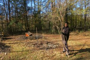 marlinda_with_tree_limb_debris_united_family_lawn_care_services