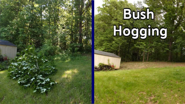 Bush Hog Vs Brush Hog | What It Is & Which Do We Do?
